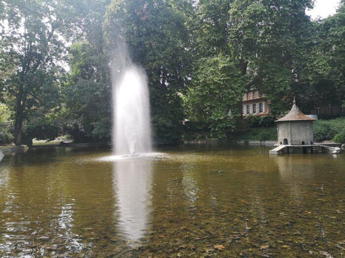 Aérateurs bassin jardin japonais Toulouse 2